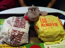 Nourriture de attente d'hippopotame avide Photos libres de droits
