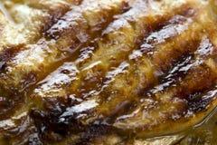 Nourriture de bifteck de boeuf bio Photos stock