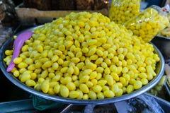 Nourriture de biloba de Ginkgo Image libre de droits