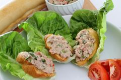 Nourriture de doigt Image stock
