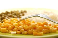 Nourriture de fourchette et de végétarien dans la plaque Photo stock