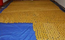 Nourriture de gens du pays de Tamil Nadu image stock