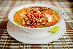 Nourriture de l'Equateur : ceviche de crevette et de poissons, poisson cru Photographie stock libre de droits
