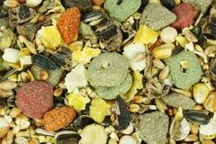 Nourriture de rongeurs Photo libre de droits