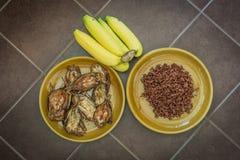 Nourriture de teneur élevée en calcium et de potassium pour le menu de repas Images libres de droits