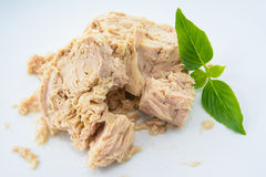 Nourriture de Tuna Canned Photos stock