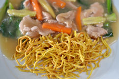 Nourriture de type thaï et chinois Images libres de droits