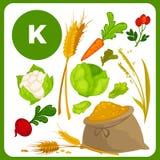 Nourriture de vecteur avec la vitamine K Images libres de droits
