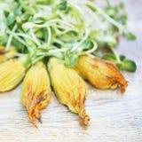 Nourriture de Vegan - savoureuse, saine, fraîche et nutritive Photo libre de droits
