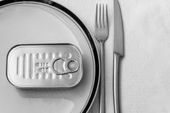 Nourriture en boîte pour le repas Photos libres de droits