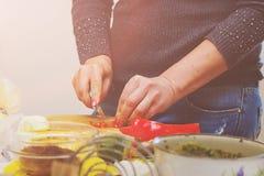 Nourriture femelle de coupe de mains Photo libre de droits