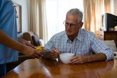 Nourriture femelle de portion de docteur à l'homme supérieur dans la maison de repos image libre de droits