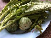 nourriture fraîche de vegetable Photographie stock libre de droits