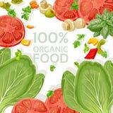 Nourriture fraîche végétarienne de fond illustration libre de droits