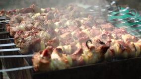 Nourriture grillant sur le barbecue Shashlik grillé de viande clips vidéos