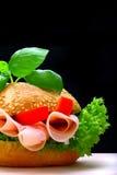 Nourriture industrielle Photographie stock libre de droits
