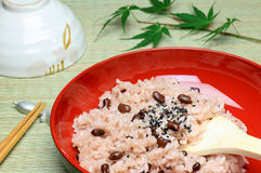 Nourriture japonaise (sekihan) Image stock