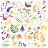 Nourriture, légumes et fruits tirés par la main de griffonnage Photographie stock