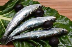 Nourriture méditerranéenne Image libre de droits