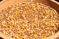 Nourriture pour oiseaux Image stock