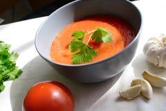 Nourriture réglée avec du potage de tomate Photo libre de droits