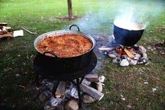 Nourriture roumaine traditionnelle, sarmale photo stock