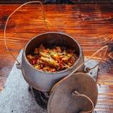 Nourriture sèche de porcelaine de poulet photo stock
