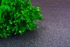 Nourriture saine et de régime : salade verte d'isolement sur le fond foncé Image stock