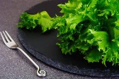 Nourriture saine et de régime : salade verte d'isolement sur le fond foncé Photos libres de droits