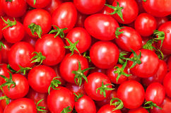Nourriture saine, fond. Tomate Image stock