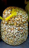 Nourriture saine - grand sac des escargots comestibles (buccin) au marché espagnol photographie stock libre de droits
