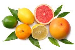 Nourriture saine mélangez le citron coupé en tranches, la chaux verte, l'orange, la mandarine, les kiwis et le pamplemousse à la  Photos stock