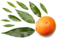 Nourriture saine pamplemousse avec la feuille verte sur la vue supérieure de fond blanc Photographie stock