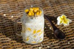 Nourriture saine, pudding de graine de chia avec la mangue, flocons d'avoine, lait de noix de coco et muesli, petit déjeuner de v photographie stock