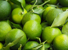 Nourriture saine - vue étroite des mandarines vertes non mûres image stock