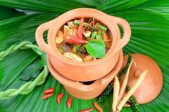 Nourriture thaïe délicieuse Image libre de droits