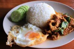 Nourriture thaïe - friture #6 de Stir Photographie stock libre de droits