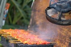 Nourriture thaïlandaise grillée de poulet Photos libres de droits
