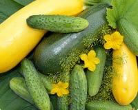 Nourriture, tomate, légumes, légume, frais, concombre, poivre, sain, vert, rouge, végétarien, agriculture, oignon, courgette, org photo libre de droits