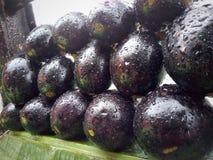 Nourriture végétale de nutrition d'aubergine saine photographie stock libre de droits