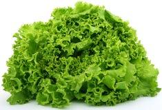 Nourriture verte fraîche de laitue Image libre de droits
