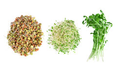 Nourriture végétarienne Photographie stock