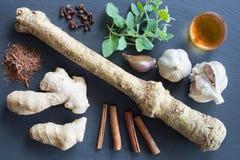 Nourritures avec les propriétés antibactériennes naturelles sur un fond foncé Image stock
