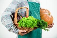 Nourritures cultiv?es sur place Agriculture et agriculture Fond blanc de potiron de prise de tablier d'usage d'agriculteur Comcep photographie stock