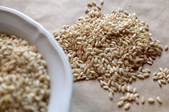 Nourritures hautes en hydrate de carbone Consommation saine, concept de régime Pain, gâteaux de riz, riz brun, avoine Image stock