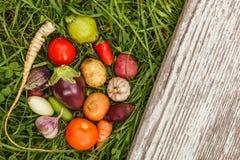 Nourritures saines nourriture crue de récolte d'automne pour des végétariens photo stock