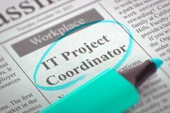Nous engageons le coordonnateur de projet IT 3d Images libres de droits