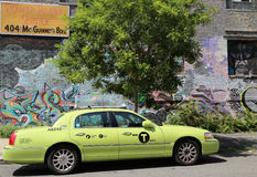 Nouveau de couleur verte Photos libres de droits