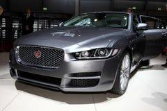 Nouveau Jaguar XF Images stock