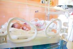 Nouveau-né dans l'incubateur Photographie stock
